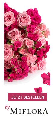 Rosen reduziert bei miflora